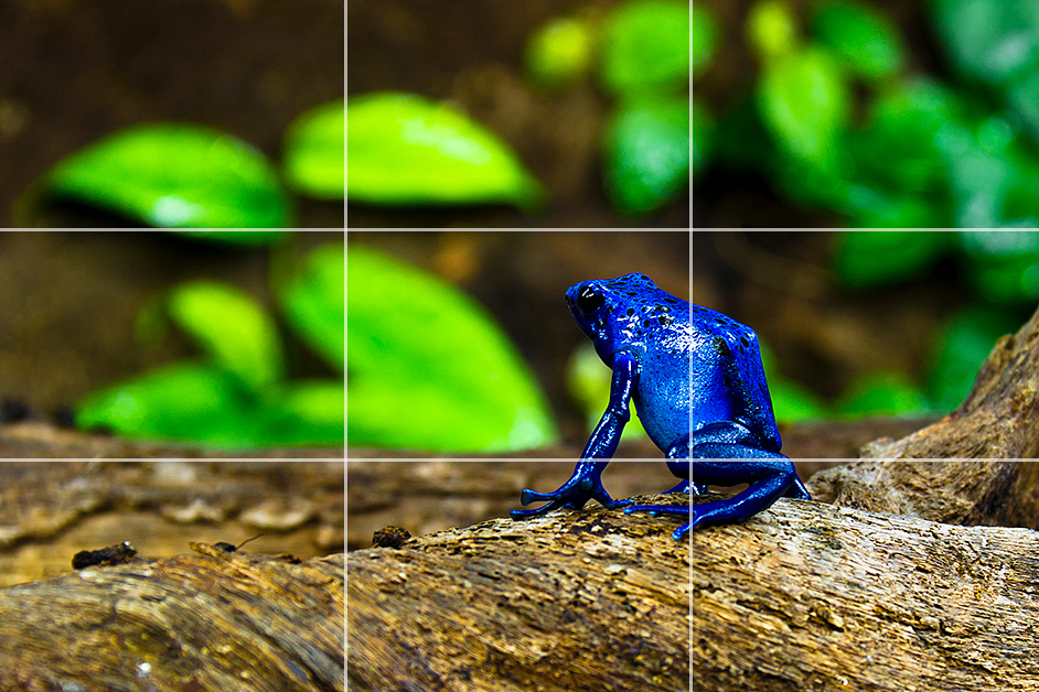 Rule of thirds breathing space example