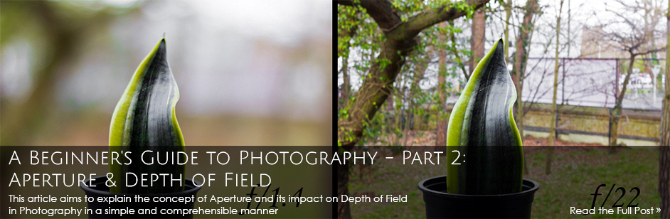A Beginner's Guide to Photography - Part 2: Aperture and Depth of Field